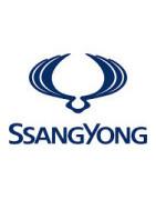Misutonida přední rámy a nášlapy pro vozy SsangYong Rexton